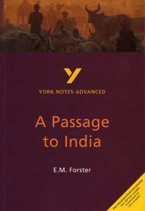 E. M. Forster 'A Passage to India' | Dodax.at