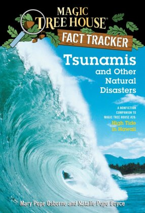 Tsunamis and Other Natural Disasters | Dodax.pl