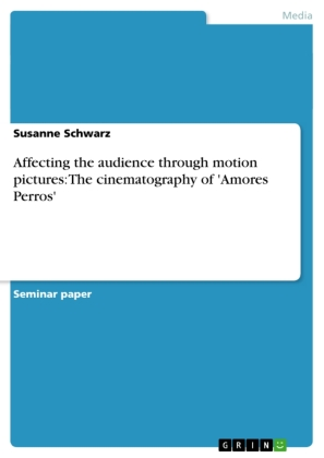 Affecting the audience through motion pictures: The cinematography of 'Amores Perros' | Dodax.ch