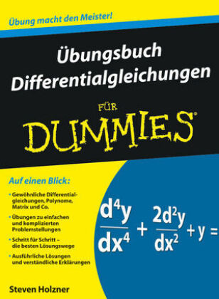 Übungsbuch Differentialgleichungen für Dummies | Dodax.co.uk