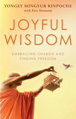 Joyful Wisdom | Dodax.at