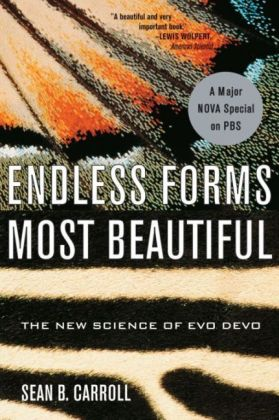 Endless Forms Most Beautifull | Dodax.ch