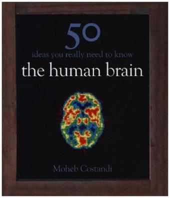 50 Human Brain Ideas You Really Need to Know | Dodax.pl