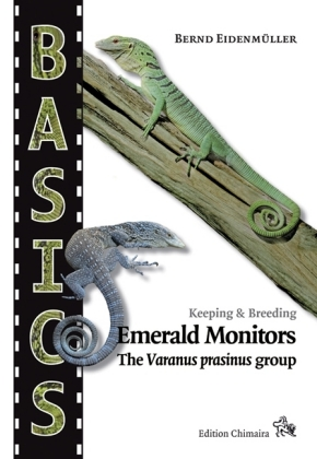 Emerald Monitors | Dodax.at