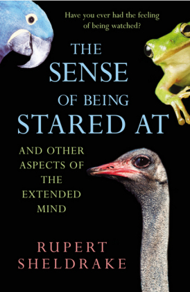 The Sense Of Being Stared At | Dodax.com
