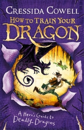 How To Train Your Dragon: A Hero's Guide to Deadly Dragons | Dodax.de