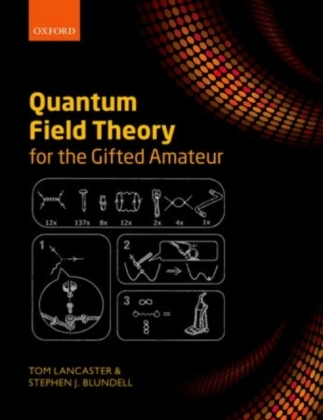 Quantum Field Theory for the Gifted Amateur | Dodax.pl