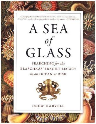 Sea of Glass | Dodax.at