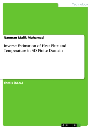Inverse Estimation of Heat Flux and Temperature in 3D Finite Domain | Dodax.com