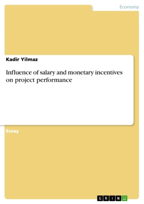 Influence of salary and monetary incentives on project performance | Dodax.pl