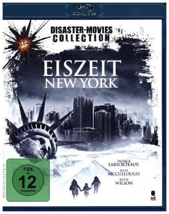 Eiszeit: New York, 1 Blu-ray | Dodax.at