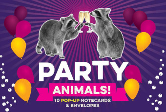 Party Animals! : 10 Pop-Up Notecards & Envelopes | Dodax.com