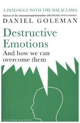 Destructive Emotions and How We Can Overcome Them | Dodax.at