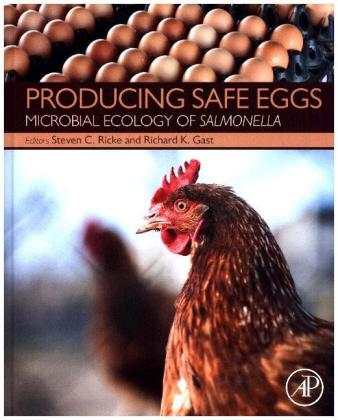 Producing Safe Eggs | Dodax.at