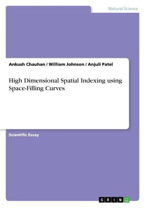 High Dimensional Spatial Indexing using Space-Filling Curves | Dodax.ch