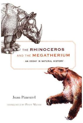 The Rhinoceros and the Megatherium | Dodax.at