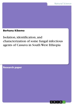 Isolation, identification, and characterization of some fungal infectious agents of Cassava in South West Ethiopia | Dodax.pl
