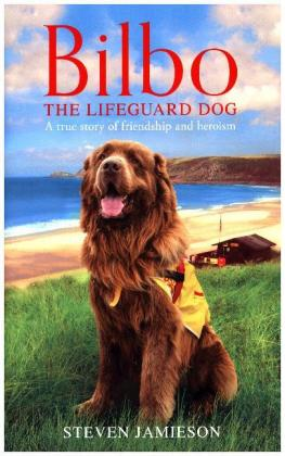 Bilbo the Lifeguard Dog | Dodax.at