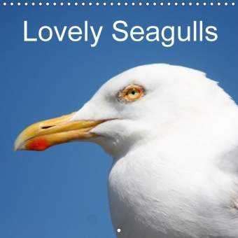 Lovely Seagulls (Wall Calendar 2017 300 × 300 mm Square) | Dodax.at