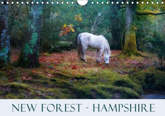 New Forest Hampshire (Wall Calendar 2017 DIN A4 Landscape) | Dodax.at