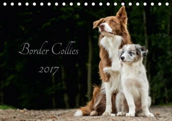 Border Collies 2017 (Tischkalender 2017 DIN A5 quer) | Dodax.at