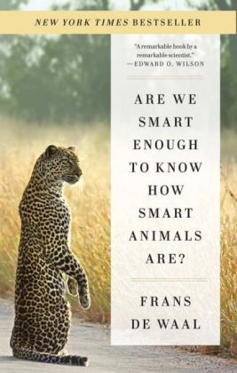 Are We Smart Enough to Know How Smart Animals Are? | Dodax.pl