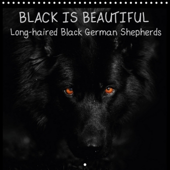 BLACK IS BEAUTIFUL Long-haired Black German Shepherds (Wall Calendar 2017 300 × 300 mm Square) | Dodax.at