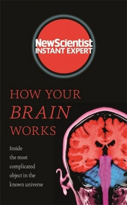 How Your Brain Works | Dodax.at