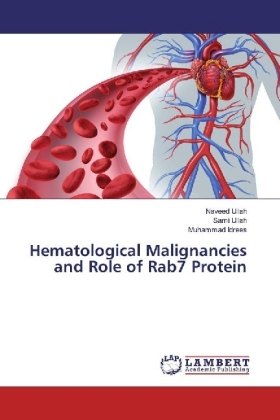 Hematological Malignancies and Role of Rab7 Protein | Dodax.pl