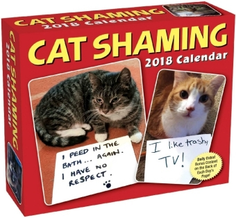 Cat Shaming 2018 Day-to-Day Calendar | Dodax.ch