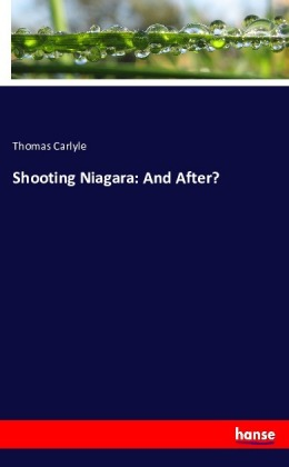 Shooting Niagara: And After? | Dodax.es