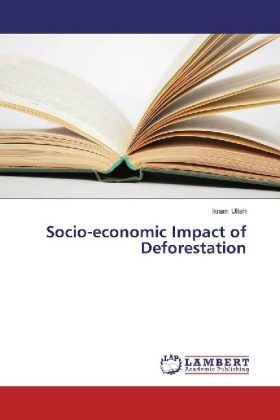Socio-economic Impact of Deforestation | Dodax.ch