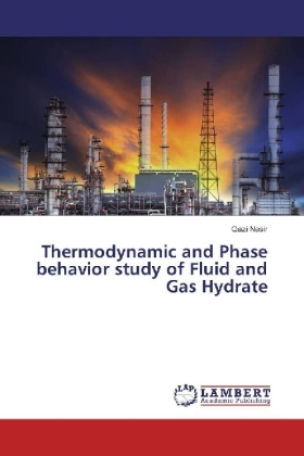 Thermodynamic and Phase behavior study of Fluid and Gas Hydrate | Dodax.at