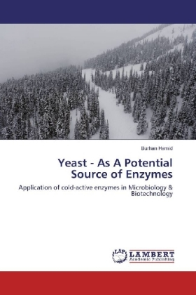 Yeast - As A Potential Source of Enzymes | Dodax.ch