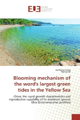 Blooming mechanism of the word's largest green tides in the Yellow Sea | Dodax.at