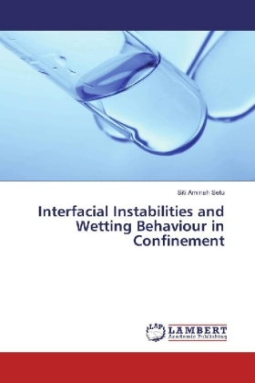 Interfacial Instabilities and Wetting Behaviour in Confinement   Dodax.ch