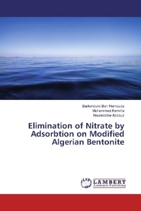Elimination of Nitrate by Adsorbtion on Modified Algerian Bentonite | Dodax.pl
