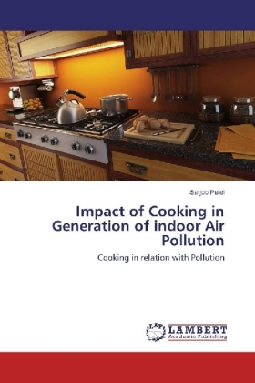 Impact of Cooking in Generation of indoor Air Pollution | Dodax.at