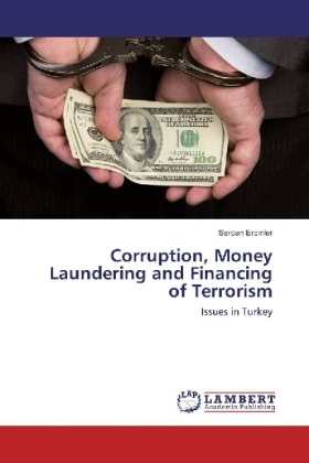 Corruption, Money Laundering and Financing of Terrorism | Dodax.pl