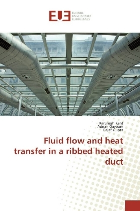 Fluid flow and heat transfer in a ribbed heated duct | Dodax.ch
