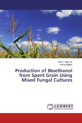 Production of Bioethanol from Spent Grain Using Mixed Fungal Cultures | Dodax.ch