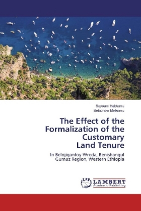 The Effect of the Formalization of the Customary Land Tenure | Dodax.pl