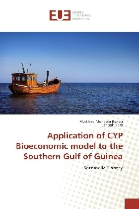 Application of CYP Bioeconomic model to the Southern Gulf of Guinea | Dodax.pl