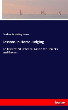 Lessons in Horse Judging | Dodax.co.uk