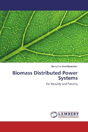 Biomass Distributed Power Systems | Dodax.pl