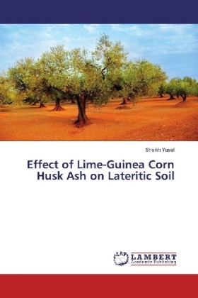 Effect of Lime-Guinea Corn Husk Ash on Lateritic Soil | Dodax.pl