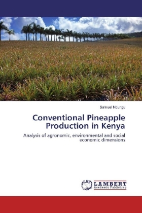 Conventional Pineapple Production in Kenya   Dodax.at