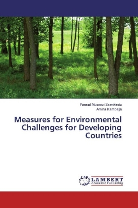 Measures for Environmental Challenges for Developing Countries | Dodax.pl