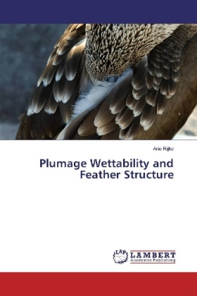 Plumage Wettability and Feather Structure | Dodax.nl
