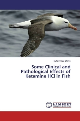 Some Clinical and Pathological Effects of Ketamine HCl in Fish | Dodax.nl